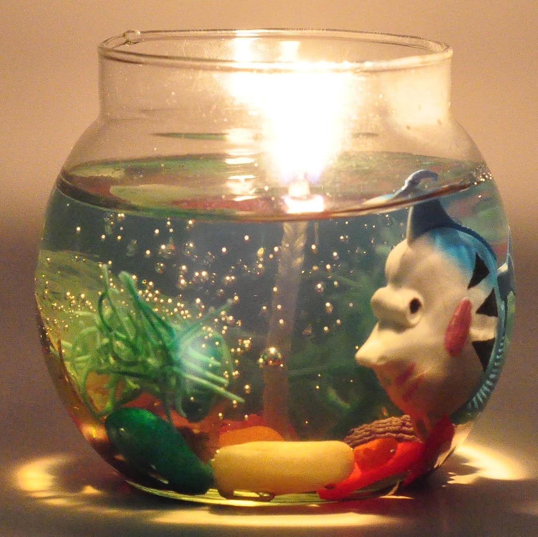 Kuddu kreations funda pecera acuario Gel aroma 40 horas de combustión: Amazon.es: Hogar