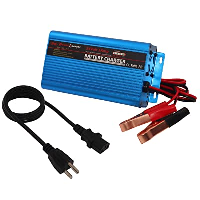 24V 5Amp Automatic Battery Charger Maintainer, Car Battery Charger Maintainer with Alligator Clips for Scooter, Wheelchair, Motorcycle, eBike, Lawn Mower Electric Tools Emergency Light etc: Automotive