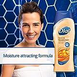 Dial Body Wash, Silk & Seaberry, 12 Ounce