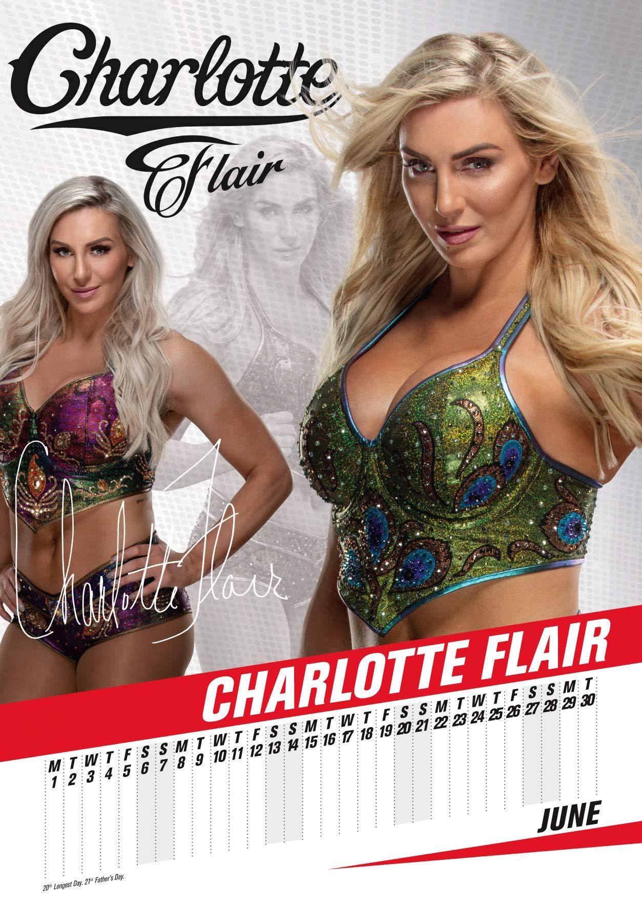 Wwe Calendar 2022.World Wrestling Women 2020 Calendar Official A3 Month To View Wall Calendar World Wrestling Women 9781838541958 Amazon Com Books