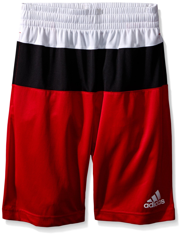 adidas Big Boys' Active Short, Light Scarlet/White, Small/8