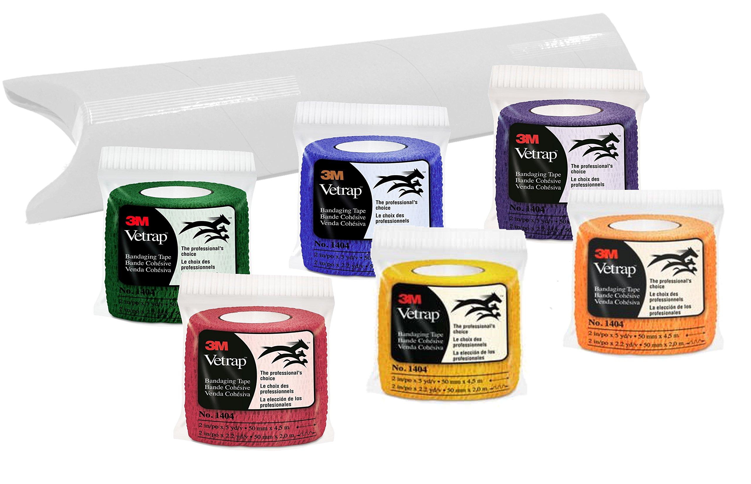 3M Vetrap 2'' Bandaging Tape, 2''x 5 Yards, (6 Rolls, Rainbow Combo) by 3M Vetrap