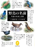 ヤマケイ文庫 野鳥の名前 名前の由来と語源