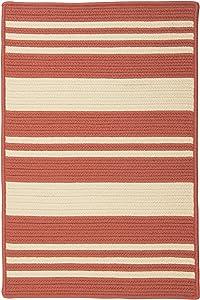 Bayou Braided Indoor/Outdoor Striped Coastal Polypropylene Terracotta Rectangular Rug