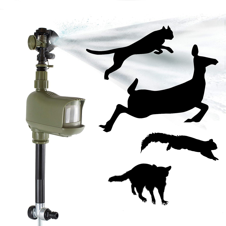 Havahart 5277 Motion-Activated Animal Repellent & Sprinkler, 1 Pack Green