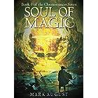Soul of Magic: Book 1 of the Chronomancer Series