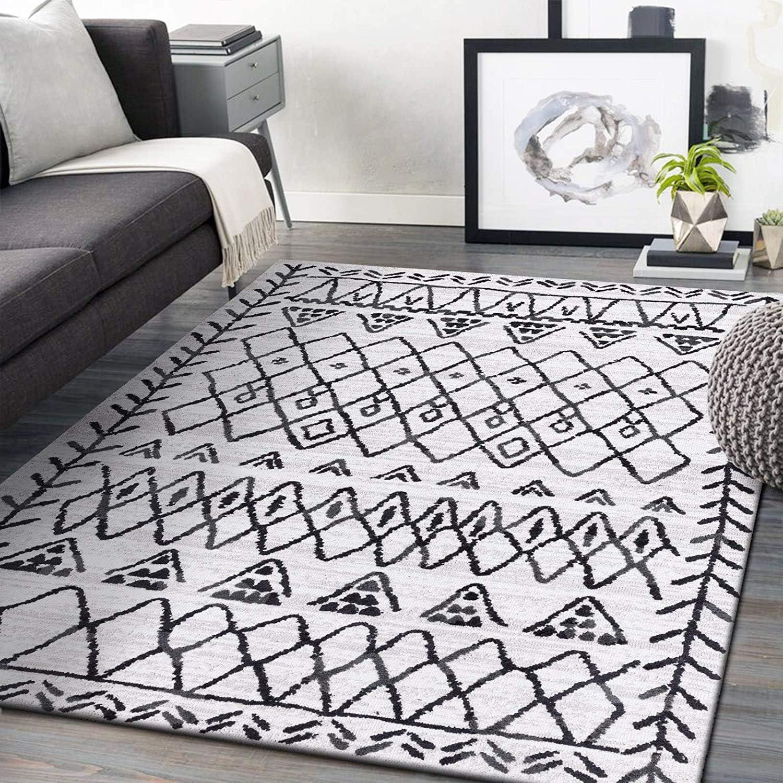 Decomall Runner Rug Bohemian Moroccan Rug Hallway Tribal Home Decor Floor Beige Carpet Vincent 2.5x9 Rug