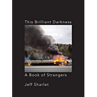 This Brilliant Darkness: A Book of Strangers book cover
