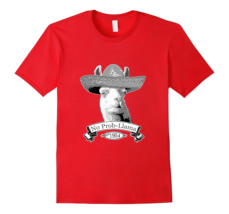 62nd Birthday Gift T-Shirt - 1954 Age 62 Llama Hipster Shirt-BN