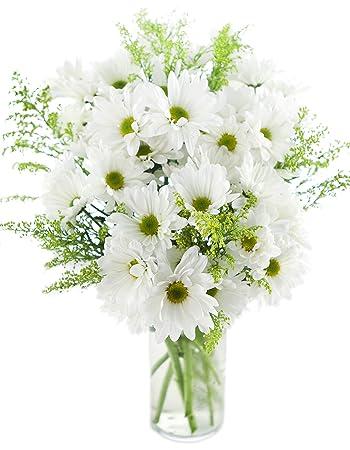 amazon com bouquet of bountiful white daisies 10 white daisy poms