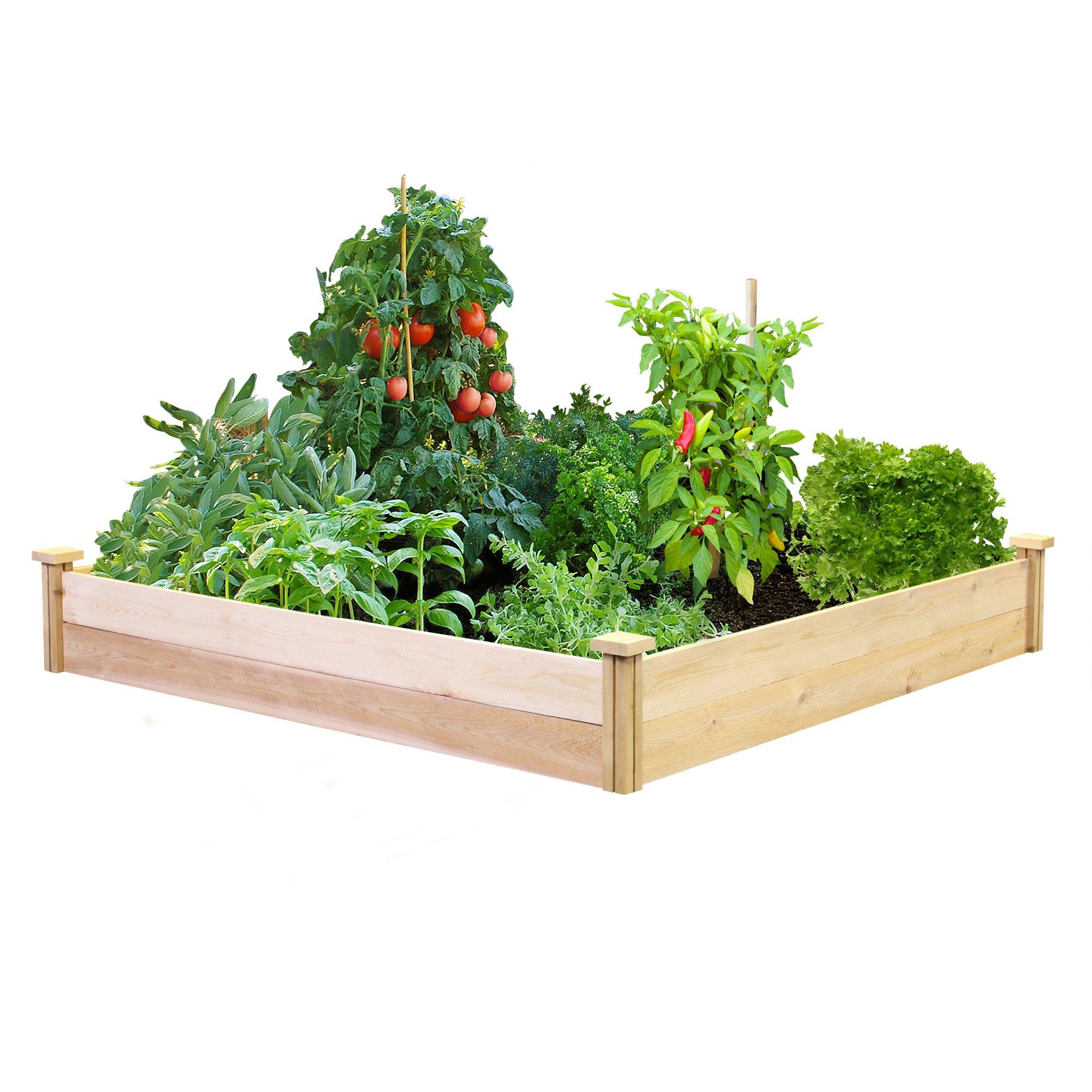 Best Value Cedar Raised Garden Bed Planter 48'' W x 48'' L x 7'' H