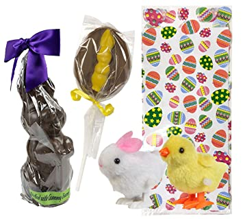 Sjaaks Organic Vegan Chocolate Easter Gummy Bear Filled Bunny Rabbit and Chocolate Bunny Lollipop with Plush