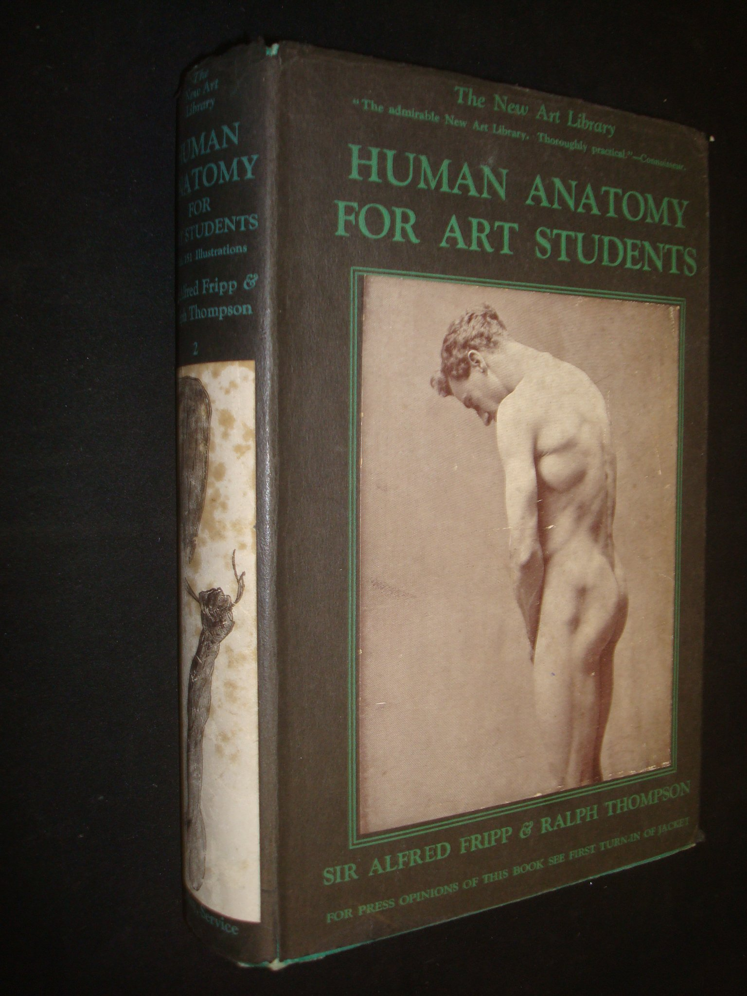 Human Anatomy For Art Students By Sir Alfred Fripp Sir Alfred Fripp