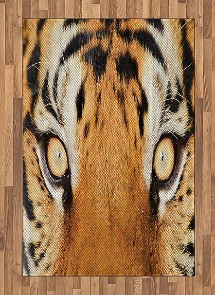Ambesonne Alfombra Safari, Cierre de Ojo de Tigre Cazador ...