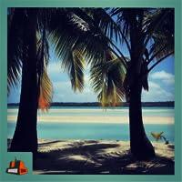 Palm Beach - Relax underthe shades of plam