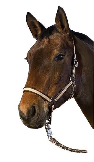 braun CATAGO Lederhalfter Pony Halfter für Ponys Ponyhalfter