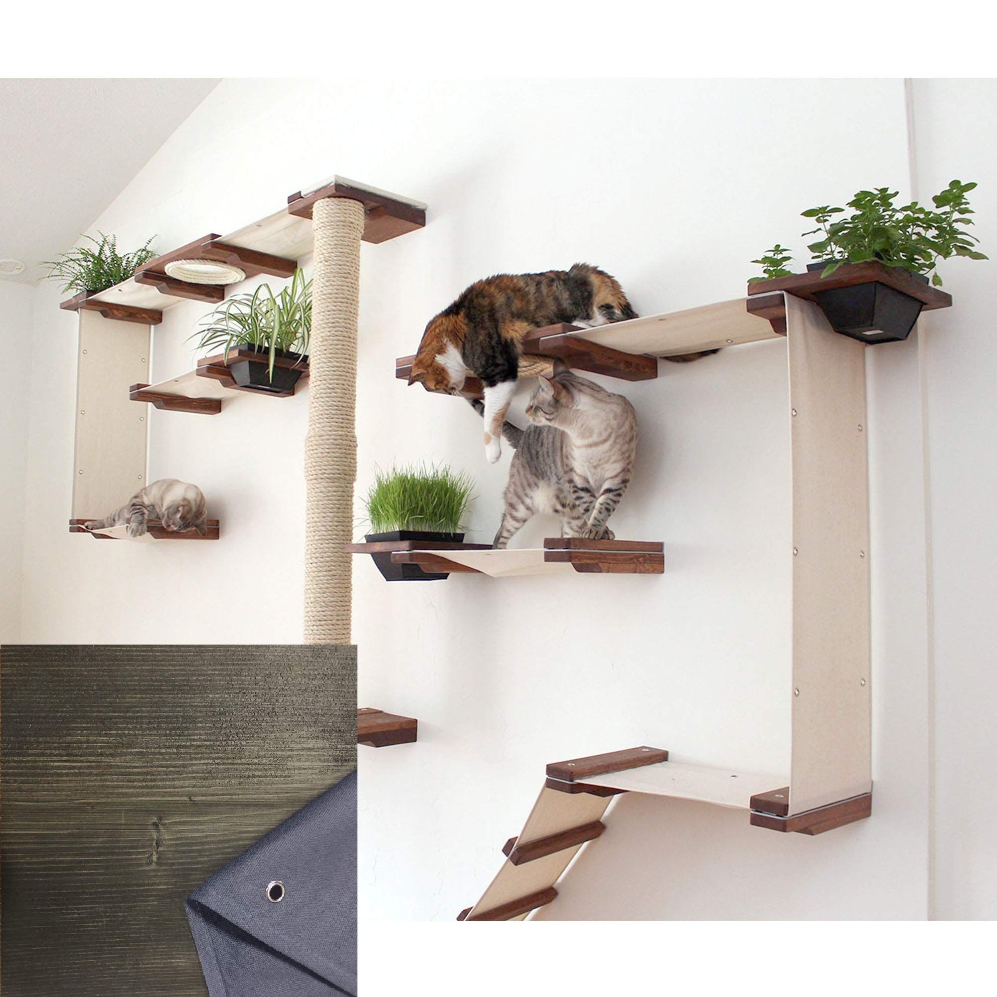 CatastrophiCreations Cat Mod Gardens Set - Multiple-Level Cat Hammock & Climbing Activity Center - Handcrafted Wall-Mounted Cat Tree Shelves with Planter for Cat Grass by CatastrophiCreations