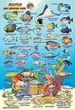 "Roatan Bay Islands Honduras Reef Creatures Guide Franko Maps Laminated Fish Card 4"" x 6"""
