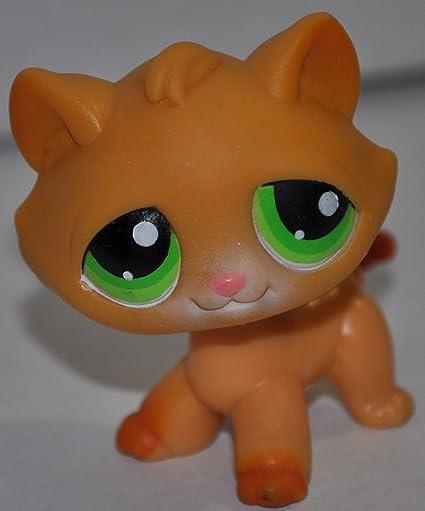 Amazoncom Kitten 110 Orange Green Eyed Littlest Pet Shop