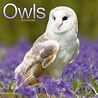 Owls Calendar 2019