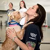 Lokai Animal Rescue Cause Collection