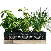 Maceteros de ventana para plantas