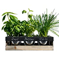Viridescent Indoor Herb Garden Kit - Kitchen Wooden Windowsill Planter Box with Herb Seeds. Best Xmas Gift Idea!