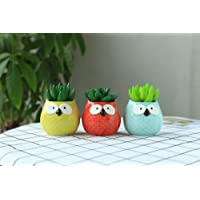 Small Planter Pot Mini Small Ceramic Owl Flower Planter Pot Flower & Herb Pot Cactus Plant Pot Handmade Colorful 3-Pcs (Triangular Eyes)