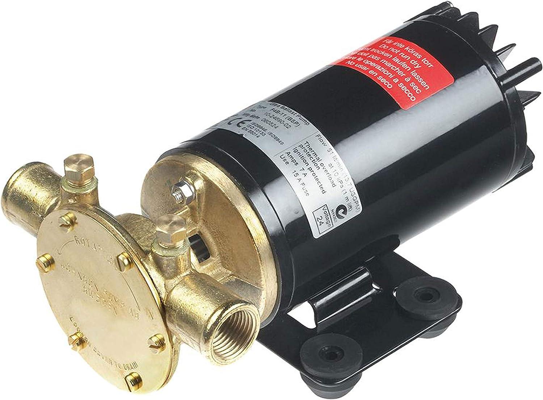 Johnson Pumps 10-24690-18 Rogue Ballast Pump 13.5 Gpm 12V