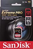 SanDisk Extreme Pro 256GB SDXC UHS-I Card (SDSDXXG-256G-GN4IN) [Newest Version]