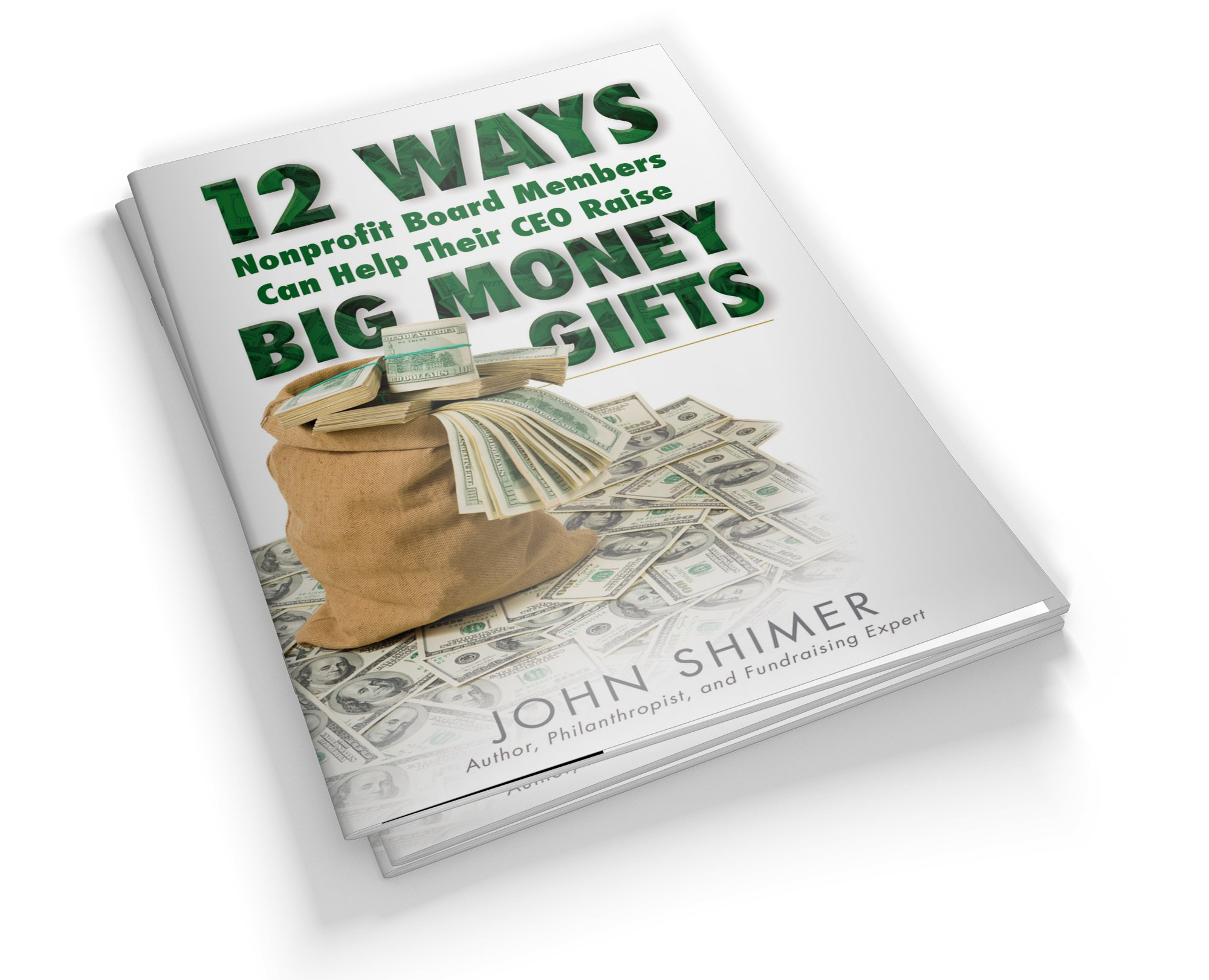 Download 12 Ways Nonprofit Board Members Can Help Their CEO Raise BIG MONEY Gifts - Next level charity donation tips for the board of directors. PDF ePub ebook