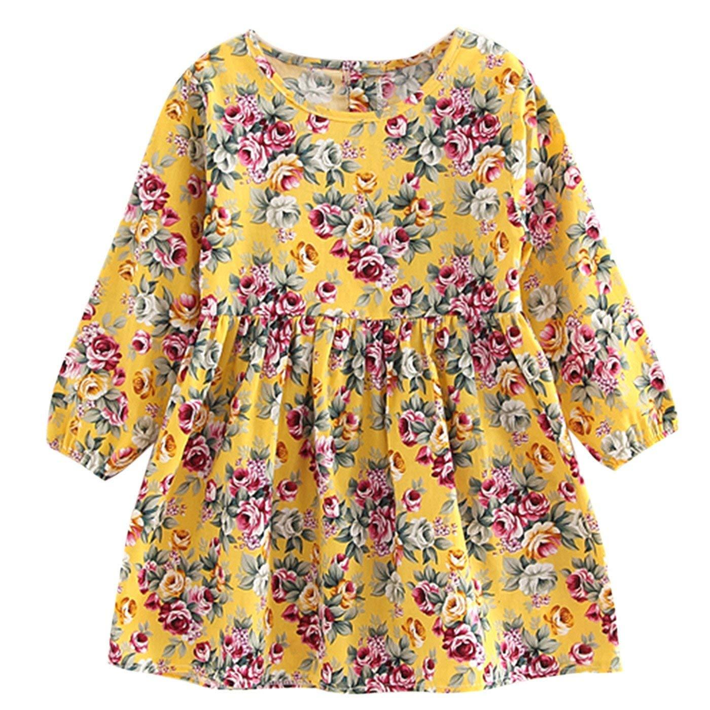LIAOYLY Summer Baby Kids Dresses Children Girls Long Sleeve Floral Princess Dress Spring Girls,