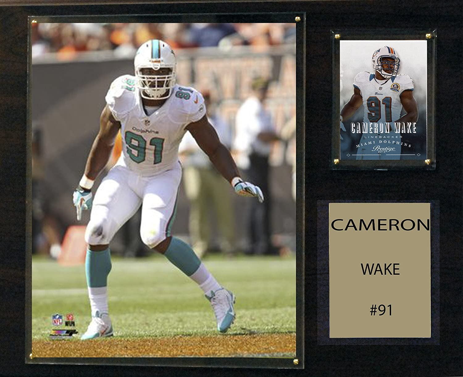 C/&I Collectables NFL Miami Dolphins Cameron Wake Player Plaque 12 x 15-Inch