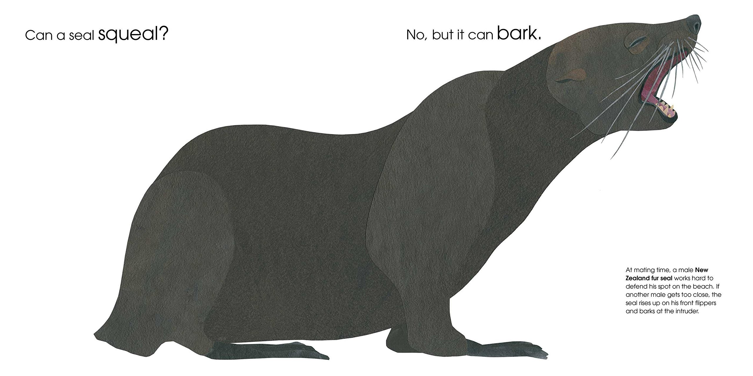 Image result for Can an Aardvark Bark?