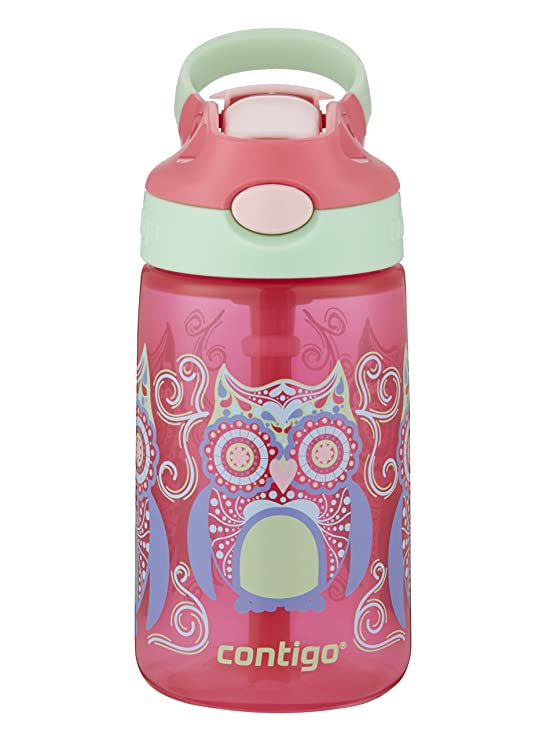 Review Contigo 2004943 Water Bottle,