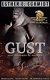 Gust: Lost Valkyries MC