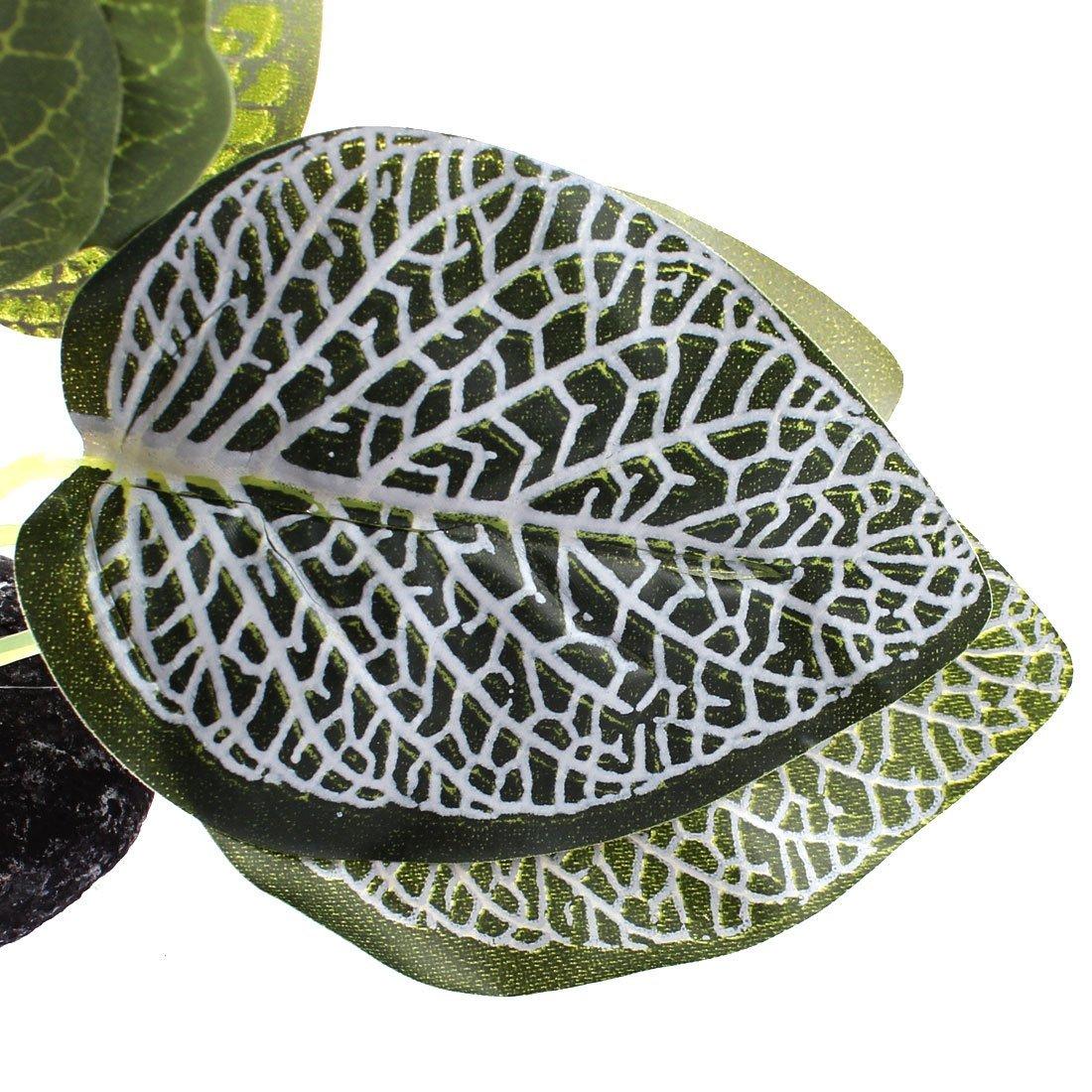 Amazon.com : eDealMax acuario pecera paisaje Plant Simulation Hierba alta decoración 14cm : Pet Supplies