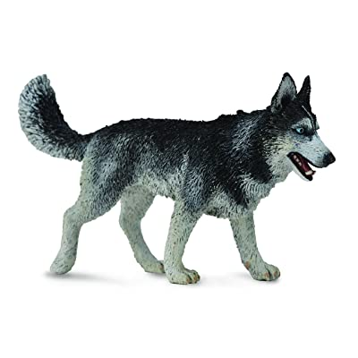 Collect A Dogs & Cats Siberian Husky Toy Figure: Toys & Games