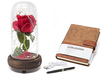 Lampe Rose Enchantee La Belle Et La Bete Sous Dome En Verre Avec Lampe Led Bloc Notes Stylo Et Carte Dans Une Boite Cadeau Centre De Table