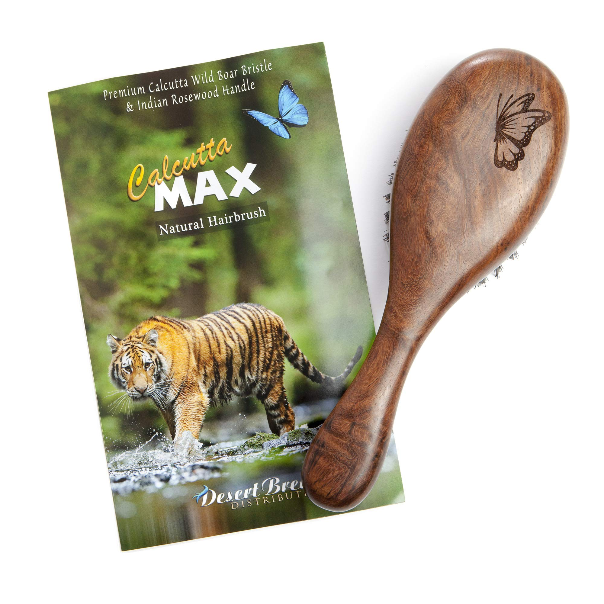 100% Pure Wild Boar Bristle Hair Brush, Calcutta Max for Thick or Long Hair, Gentle, Extra Stiff Natural Bristles, Hand Finished Indian Rosewood Handle, Tufted in USA, by Desert Breeze Distributing by Desert Breeze Distributing (Image #7)