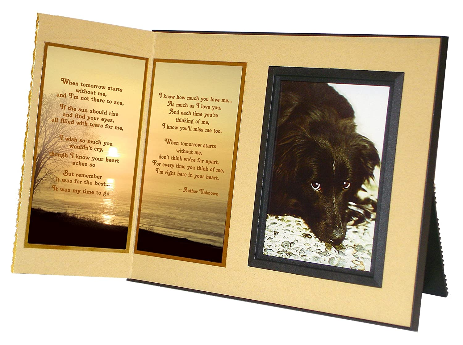 Amazon.com : Pet Lover Remembrance Gift, \