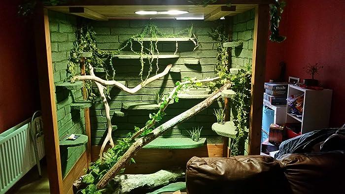 Stunning Handmade Iguana Water Dragon Snake Reptile Vivarium