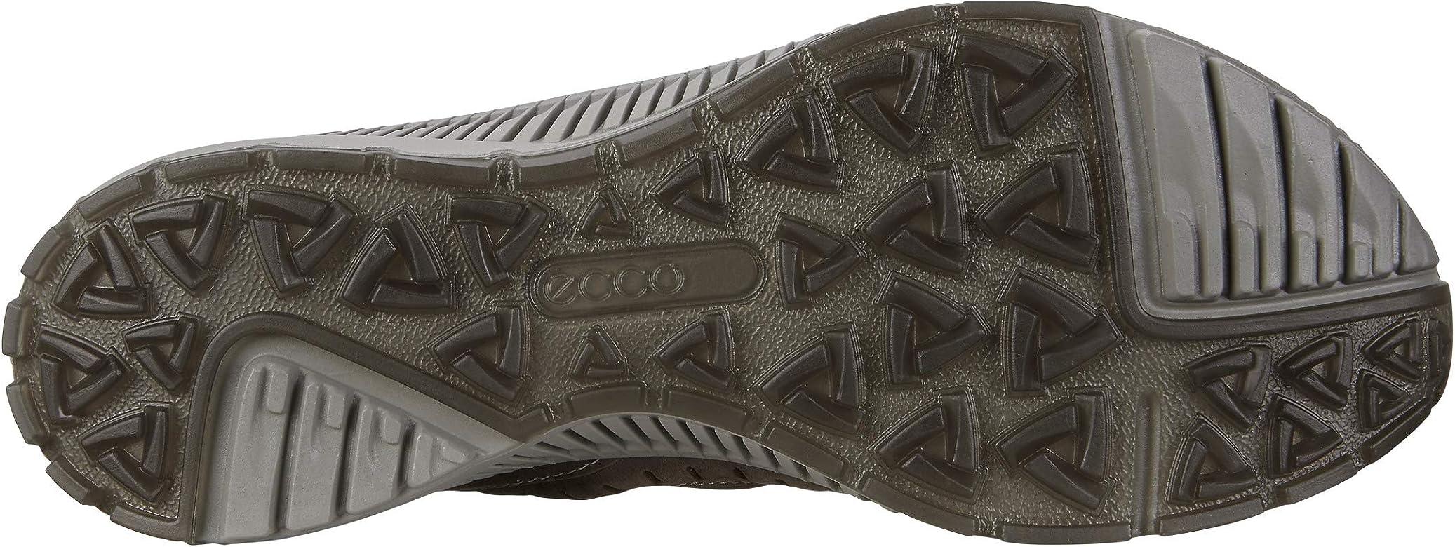 ECCO Men's TERRAWALK Hiking Shoe