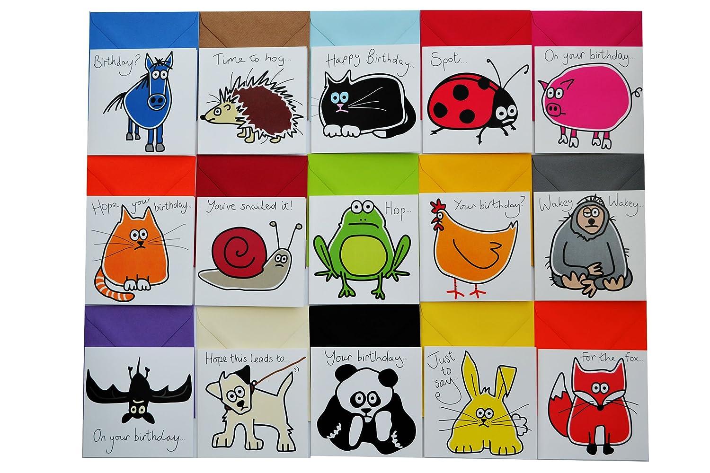 15 X Animal Birthday Cards Bumper Card Pack Amazon Co Uk Clothing