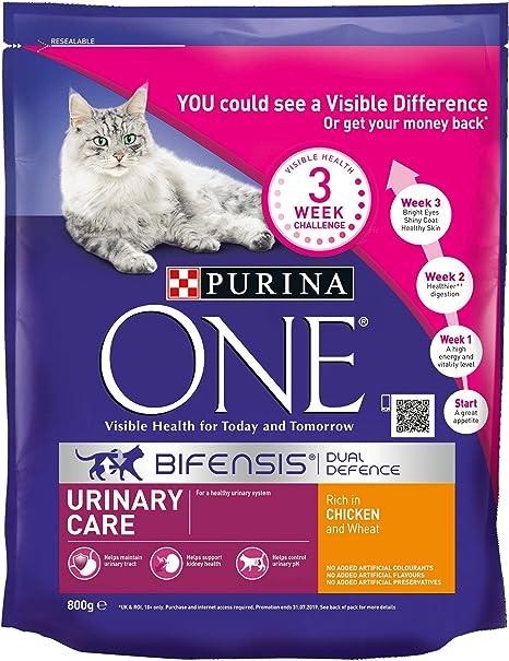 PURINA ONE - Pollo de Cuidado urinario para Gatos, 800 g, Estuche ...