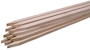 "Walnut Hollow Wood Stake for Gardens, Signs and Projects, 36"" Long (Pack of 12)"
