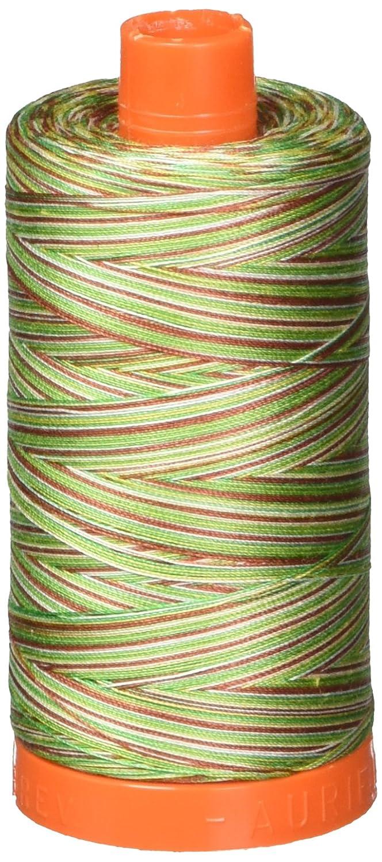 Aurifil A1150-4650 50wt 1422yds Variegated Mako Cotton Embroidery Thread Aurifil USA
