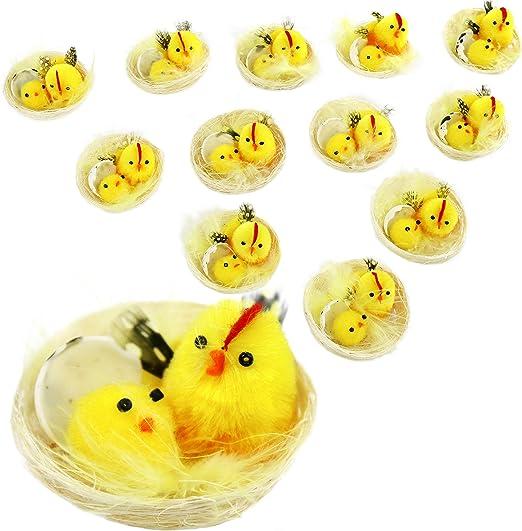 Gemelos de huevos de gallina con bolsa