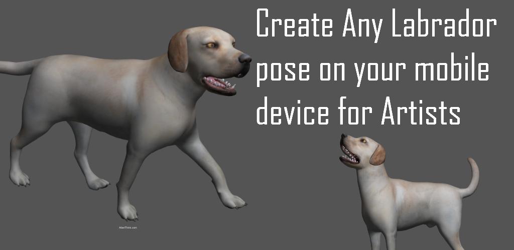 Labrador Pose Tool 3D