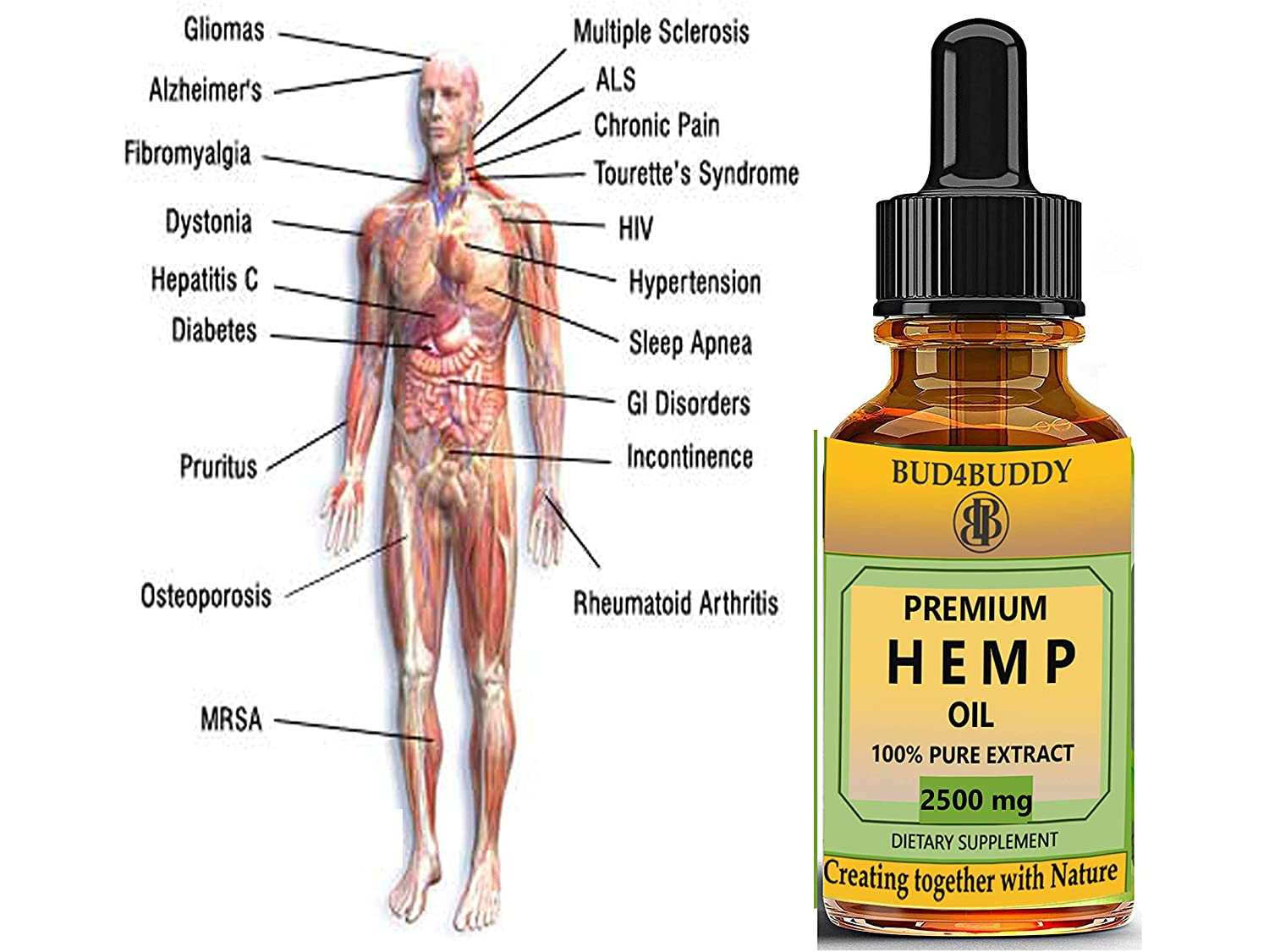 Amazon.com: Hemp Oil Drops 2500mg, 100% Natural Extract, Supports Anti Anxiety and Stress Health, All Natural Dietary Supplement, Rich in Omega 3 and 6 ...